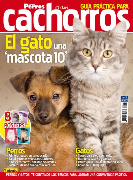 guia-practica-cachorros-3
